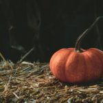 10月11日誕生日占い運命の人・ソウルメイト・恋愛・友達・仕事・ライバルなど相性一覧表 – 最新決定版【誕生日占い大全365】占いブッフェ